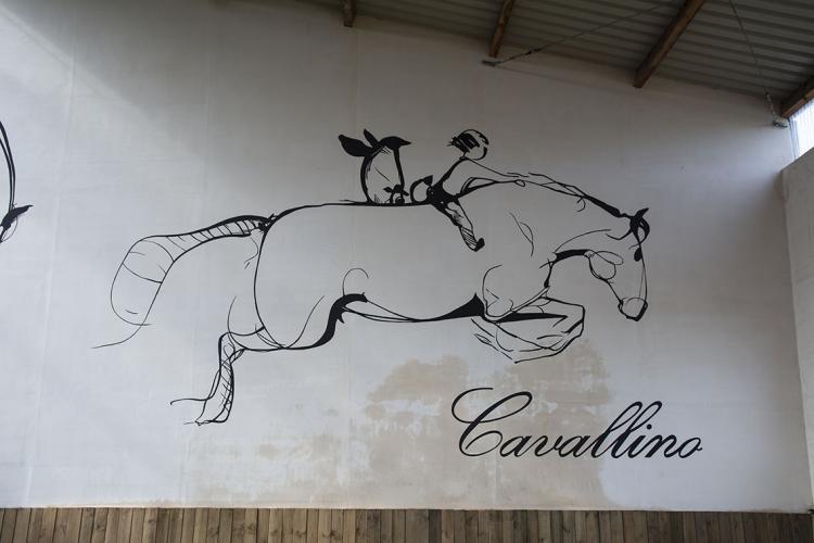 malowany-kon-bydgoszcz-dekoracja-sciany-Cavallino-1