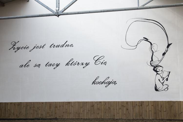 malowany-kon-bydgoszcz-dekoracja-sciany-Cavallino-5